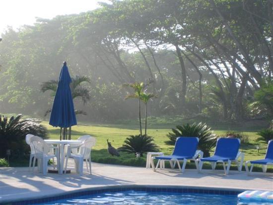 Foto de Hideaway Beach Resort