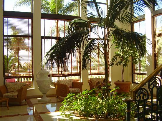 Iberostar Anthelia: one of many quiet areas of hotel