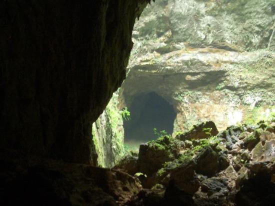Parque de las Cavernas del Rio Camuy : Parque Del Rio Camery/Puerto Rico