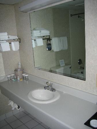 Mankato City Center Hotel : Room 418