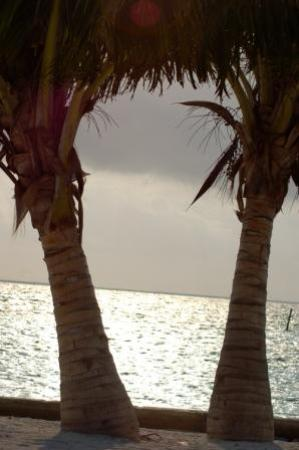 Seaside Cabanas-bild
