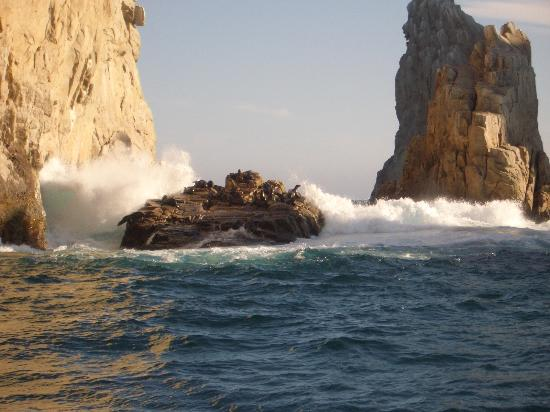 Cabo San Lucas, Messico: views from tropicat tour