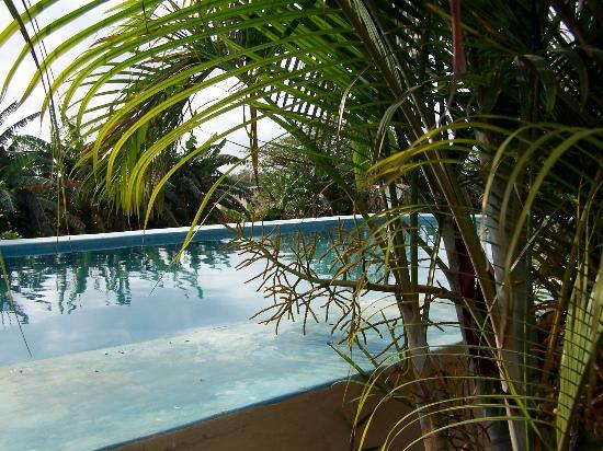 Hacienda San Pedro Nohpat: the private pool