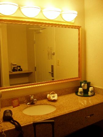La Quinta Inn Cleveland Independence: Sink and vanity