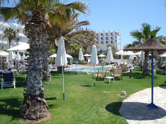 Louis Ledra Beach: garden area