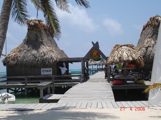 Ramon's Village Resort : Ramon's Dive Center