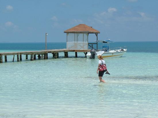 Foto de Coco Plum Island Resort