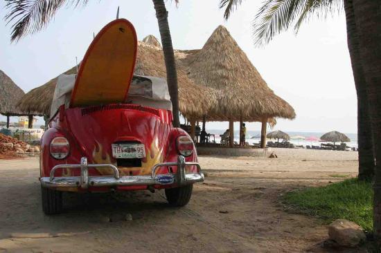 Beach Hotel Ines : Local Surf Bug