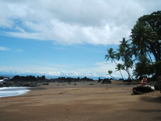 Marenco Beach & Rainforest Lodge: Danta Beach (short walk from Marenco)