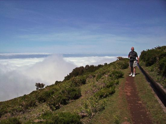 Monte Verde: Levada walk above the clouds