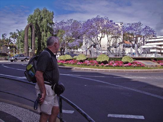 Monte Verde: Funchal Rotunda Infante Flower trees