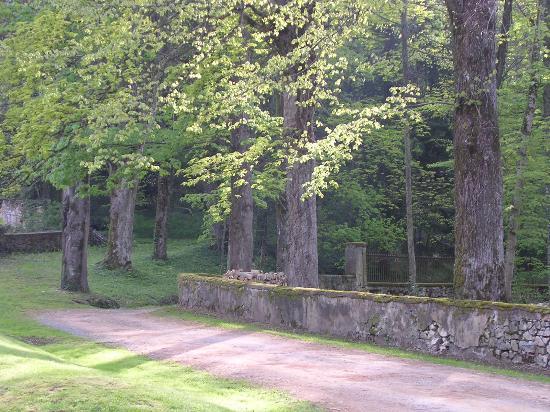 Chateau de Pramenoux : drive of Chateau