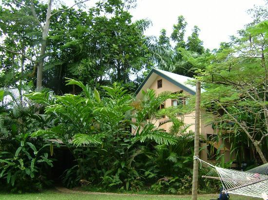 Colo I Suva Rainforest Eco Resort: The dorm room