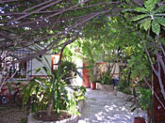 Foto Paraiso Azul's -Casa De Gopala