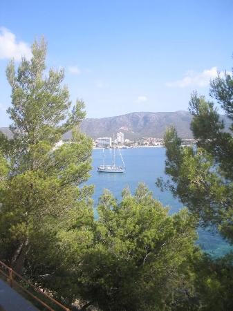 Intertur Palmanova Bay: The view from one room