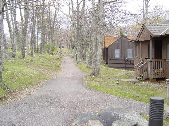 Big Meadows Lodge: Path in front of room