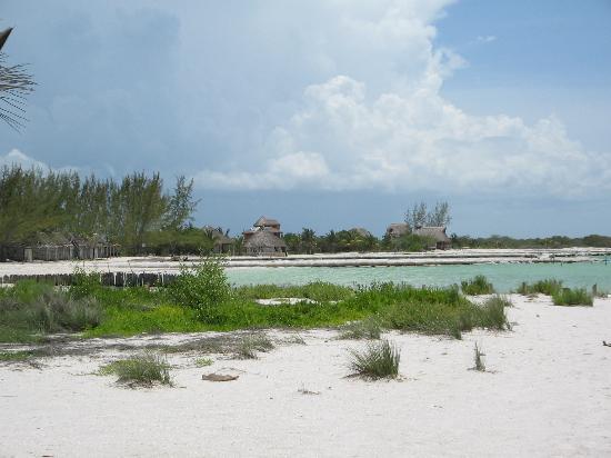 Isla Holbox, México: Los Mapaches Beach