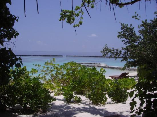 Baros Maldives: Vue de la terrasse