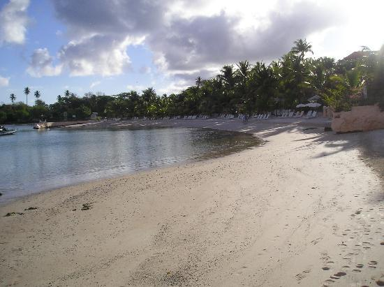 Coco Reef Resort & Spa Tobago: beach 2