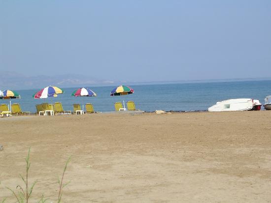 Marina Hotel : The beach