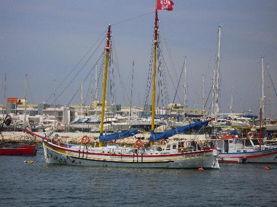 Lagos, Portugal: Bom Dia Grotto Cruise