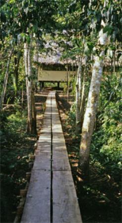 ExplorNapo Lodge: Nancy Dunn's Amazon LIbrary