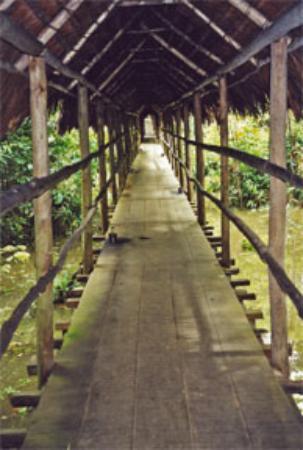 ExplorNapo Lodge: the trek to my room at ExplorNapo