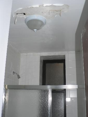 Mount Royal Hotel & Hostel: bathroom down the hall/hell