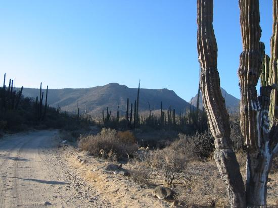 Bahia de Los Angeles, Mexico: the surrounding countryside