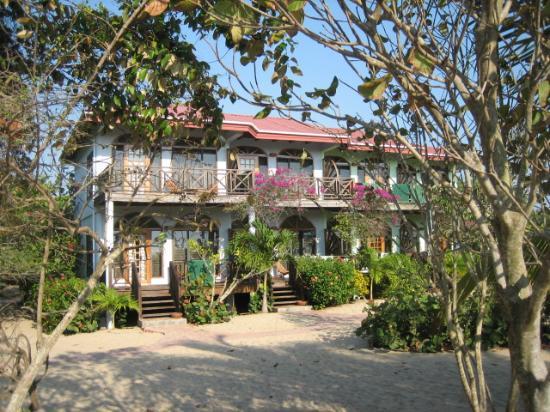 Hamanasi Adventure and Dive Resort: Oceanfront Rooms