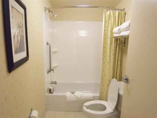 SpringHill Suites Fort Myers Airport: Bathroom