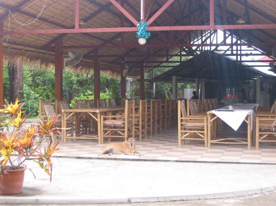 Golden Cupids Hotel: the dining pavilion with open kitchen - heart of the hotel