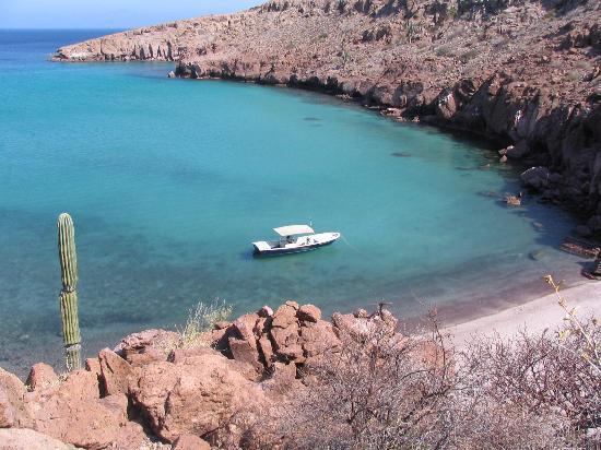 Baja Camp: a day hike