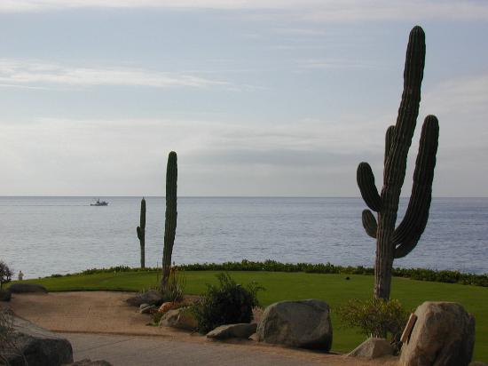 Cabo San Lucas, Meksiko: Might be golf hole 9 at Cabo del Sol golf course