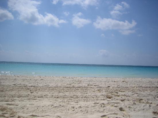 فيرمونت ماياكوبا: the beach