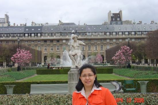 Jardin du palais royal photo de jardins du palais royal for Jardin royal