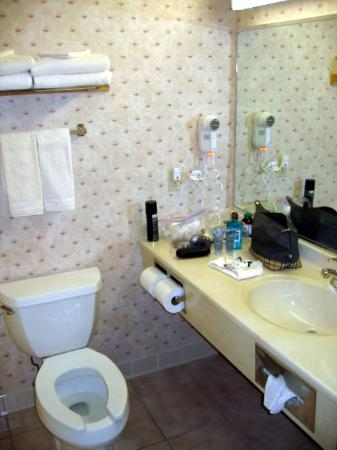 Country Inn & Suites by Radisson, Rock Falls, IL: Clean Bathroom
