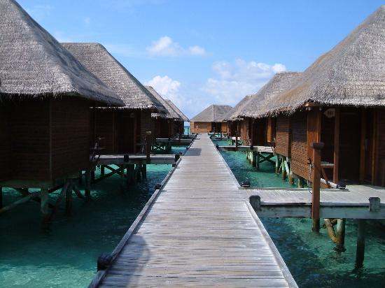 Veligandu Island Resort & Spa: Water bungalows