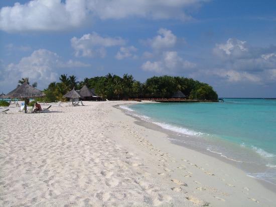 Veligandu Island Resort & Spa: Looking back along the sand bank