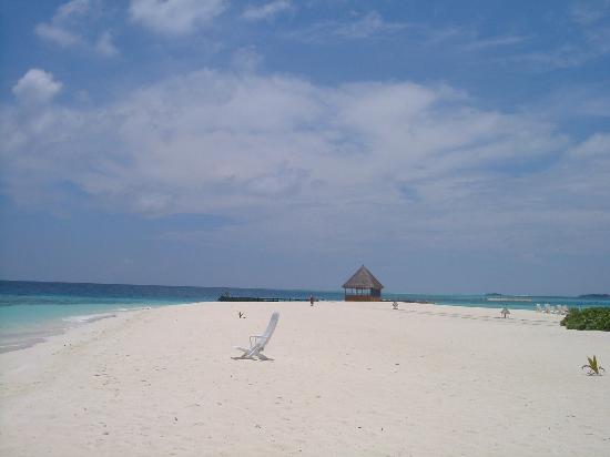 Veligandu Island Resort & Spa: Pure bliss