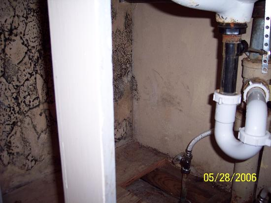 Americas Best Value Inn of Williams: Infested with mold under sink