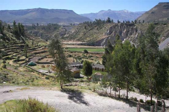 Yanque, Peru: Colca Lodge from above