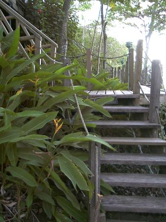 Footprints Eco Resort: Steps leading to the rooms