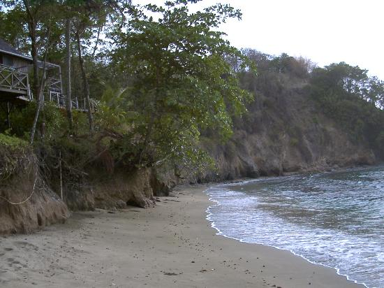 Footprints Eco Resort : Secluded Beach