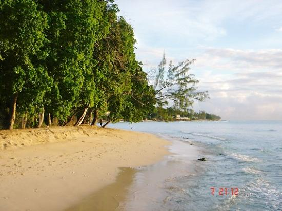 Saint James Parish, บาร์เบโดส: Another view of the beach