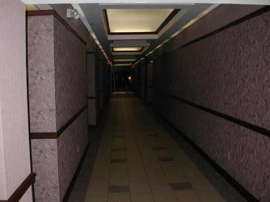 Ramada Ithaca Hotel & Conference Center: Interior corridor
