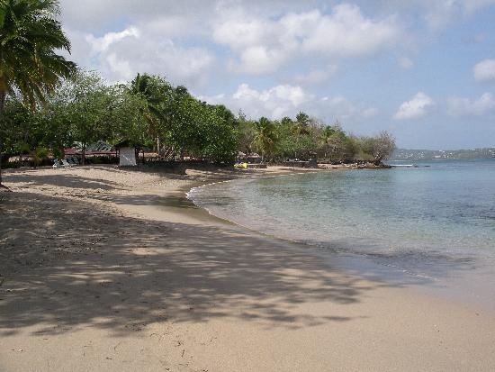 East Winds: Beach outside hotel