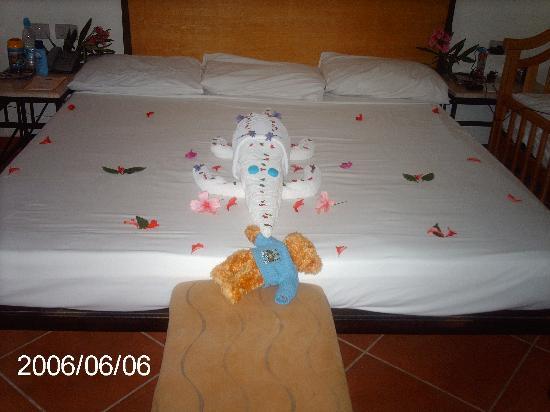 Luna Sharm Hotel: croc