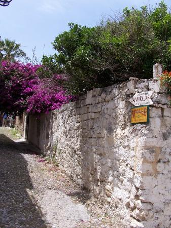 Hotel Andreas: The lane leading up to the hotel