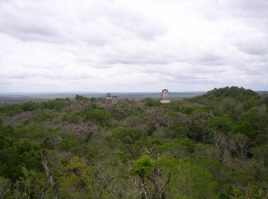 The Lodge at Chaa Creek: Tikal overlooking Temples 1-3